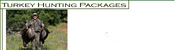 Turkey Hunting Packages
